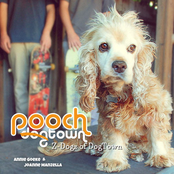 Pooch DogTown